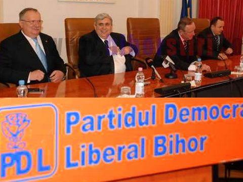 PDL Bihor contraataca: UDMR -